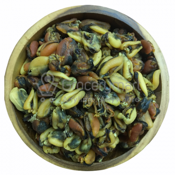 Dried Mussels 淡菜